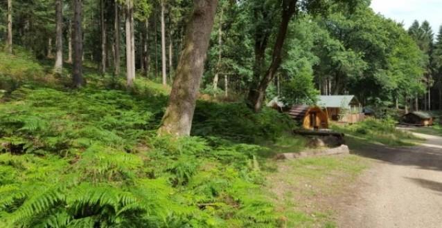 Top 5 Vergaderlocatie in het bos
